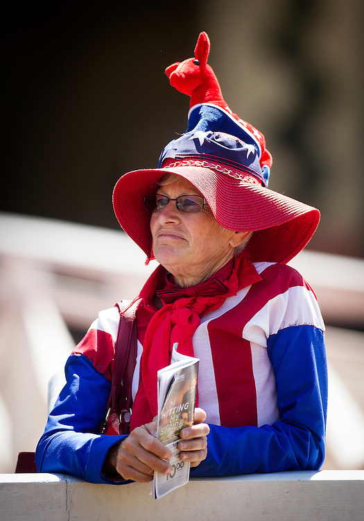 April 04 2015: Dortmund Superfan at Santa Anita Derby at Santa Anita Park in Arcadia CA. Alex Evers/ESW/CSM