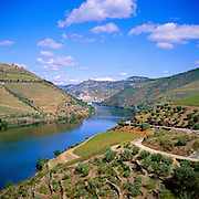 Portugal Minho Region Douro River Vines town of Pinhao in Distance