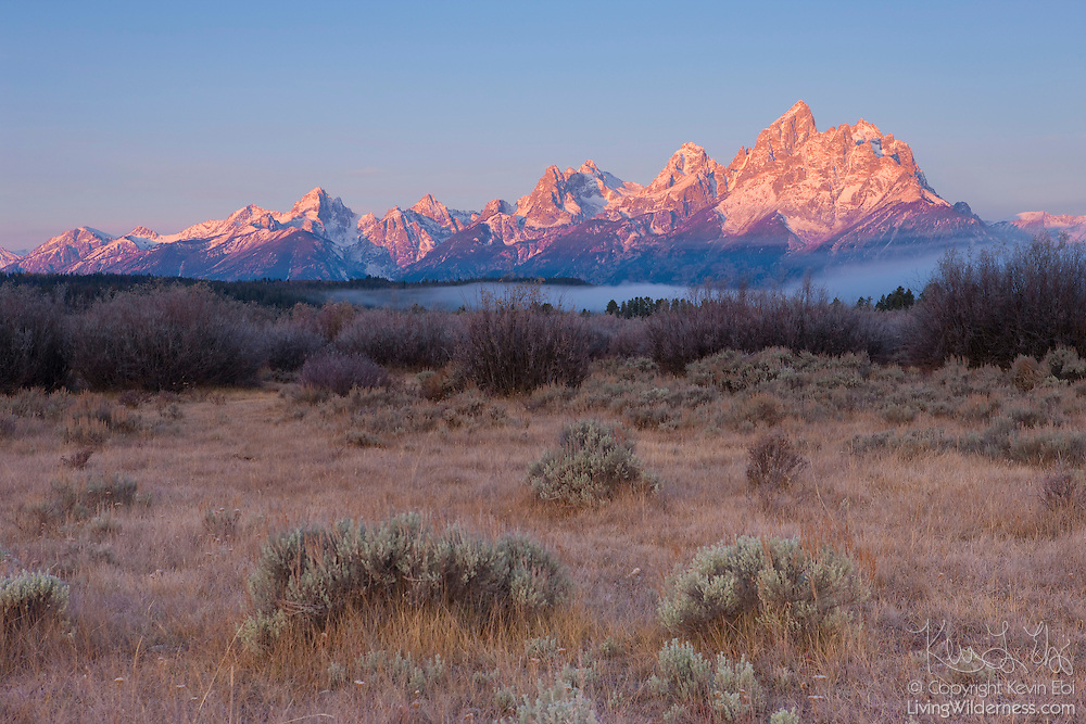 Fog begins to develop in the Elk Ranch Flats beneath Grand Teton, Wyoming, at sunrise. Grand Teton, at 13770 feet (4197m), is the highest peak in Grand Teton National Park.