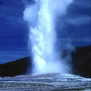 USA, Wyoming, Yellowstone National Park. Old Faithful erupts.