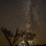 Night photograph of a climber's camp below the Milky Way in Indian Creek Canyon, Southern Utah.