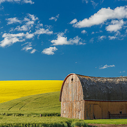 Shoot/Week 62: Palouse