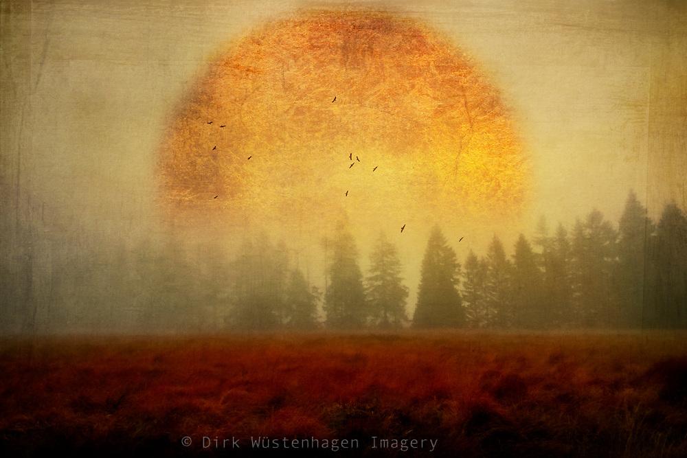Misty landscape with a stylized sunlike object - textured photograph