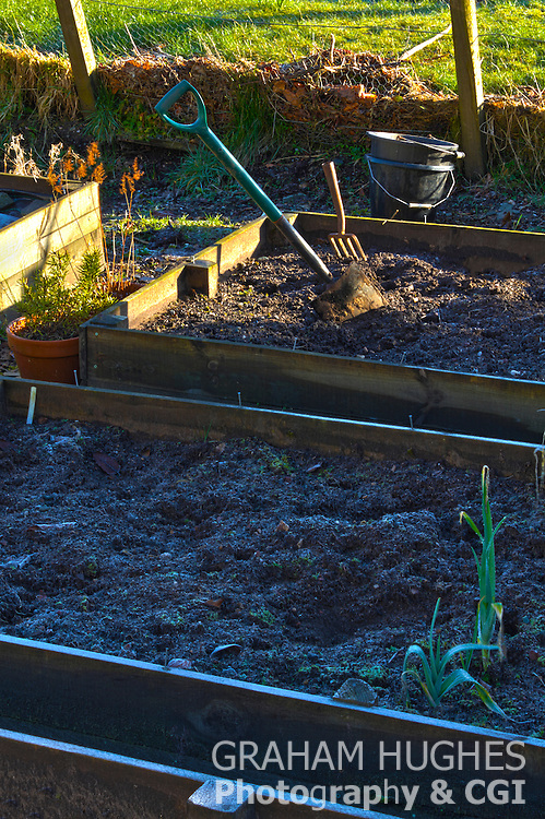 Spade and buckets in allotment with early morning frost.