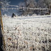 Fog frozen on a fence during a cold missouri winter morning.