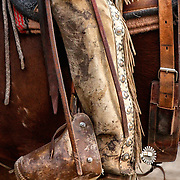 The boots, spurs, and chaps are functional pieces of equipment used every day by the American cowboy. As well as being functional they can be quite decorative and the spurs are often inlayed with silver or gold. This cowboy has buldog tapaderos on his stirrups to protect his feet from catus and brush.