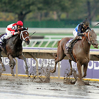 Breeders Cup 2007 World Championships