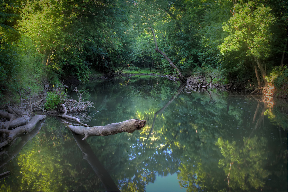 Turnback creek at three whistles, looking south on a summer morning. Lawrence county, Missouri.