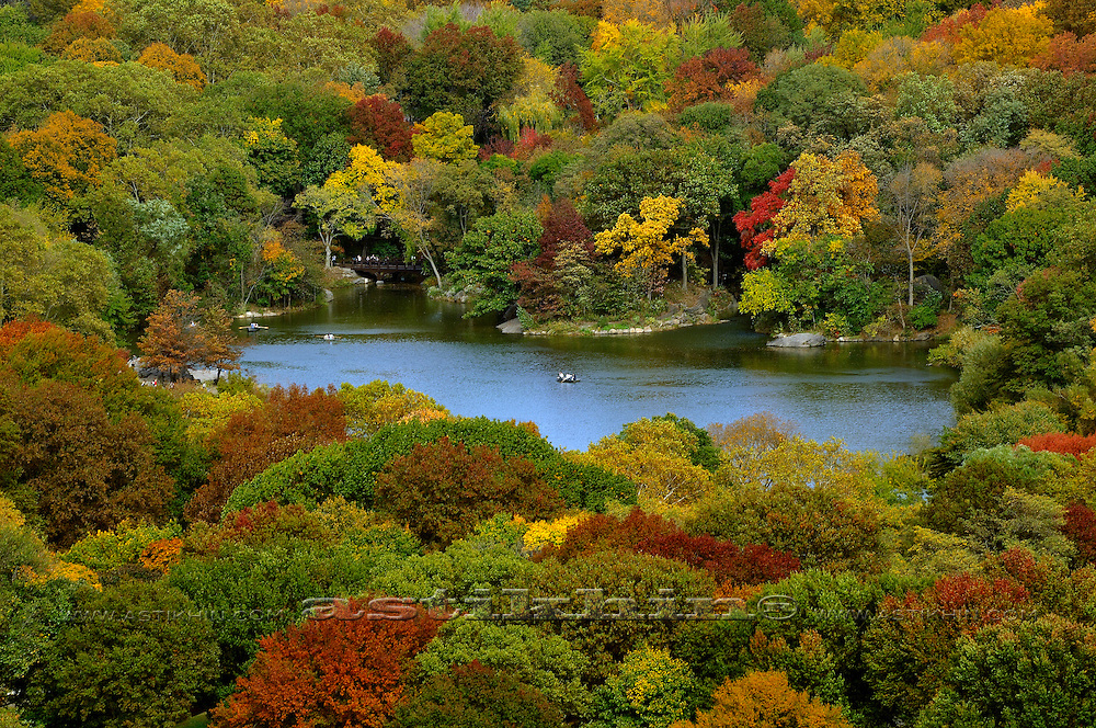 Fall in Central Park NYC