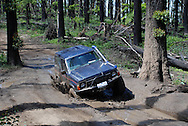 1995 Land Rover Discovery V8 - Green.In action on 4WD tracks.Bunyip State Forest, Southern Victoria, Australia .24th January 2010.(C) Joel Strickland Photographics.Use information: This image is intended for Editorial use only (e.g. news or commentary, print or electronic). Any commercial or promotional use requires additional clearance.