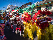 27 JANUARY 2017 - BANGKOK, THAILAND: Chinese Lion dancers perform at a Chinese Shrine in Bangkok on Chinese New Year. 2017 is the Year of the Rooster in the Chinese zodiac. This year's Lunar New Year festivities in Bangkok were toned down because many people are still mourning the death Bhumibol Adulyadej, the Late King of Thailand, who died on Oct 13, 2016. Chinese New Year is widely celebrated in Thailand, because ethnic Chinese are about 15% of the Thai population.       PHOTO BY JACK KURTZ