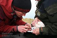 12: SVALBARD SAMPLING & RELEASING