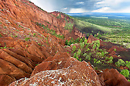 Red Mountain Cinder cone in Cocnino National forest, Arizona.