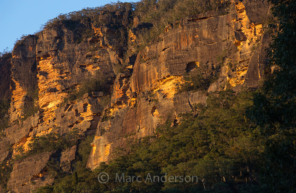 Rugged sandstone cliffs in warm late afternoon sunlight, Wollemi National Park, NSW, Australia