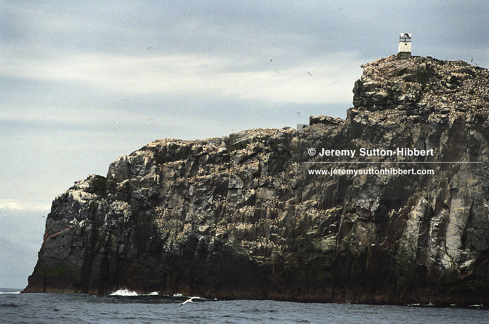 """The rocky island of Sula Sgeir, 50 miles west of Lewis, Scotland, in the North Atlantic. Sula Sgeir is inhabitated only by sea birds, except for 2 weeks each year when men from the town of Ness on Lewis arrive to cull 2000 young gannets known as """"guga"""".."""