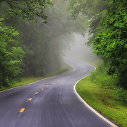 &quot;Fog on the Parkway&quot;2<br /> <br /> Beautiful thick fog on a summer morning on the Blue Ridge Parkway!