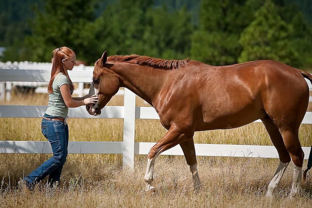 Female horse ass - photo#8