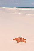 Bahamas - Harbour Island