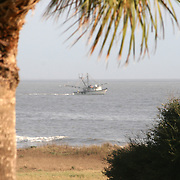 A shrimp boat running nets near a Jekyll Island beach.