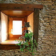 window pane with cat pot and ivy on stone wall background