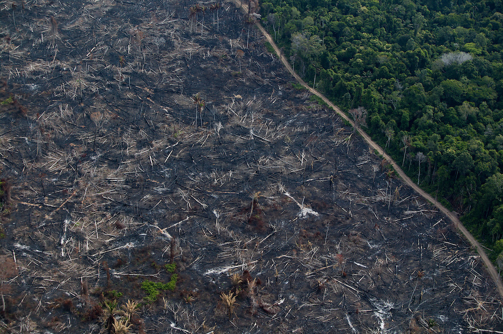 Dec. 8, 2003. Deforested land for cattle and soy plantations in Para State, Brazil. ©Daniel Beltra