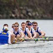 UBC Rowing Gallery