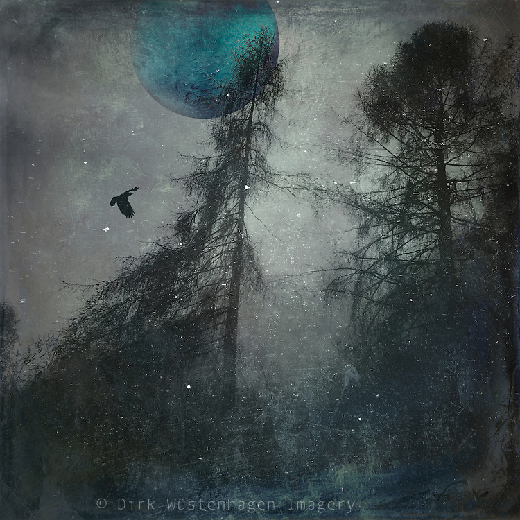 Surreal composing made with my own photographs<br />