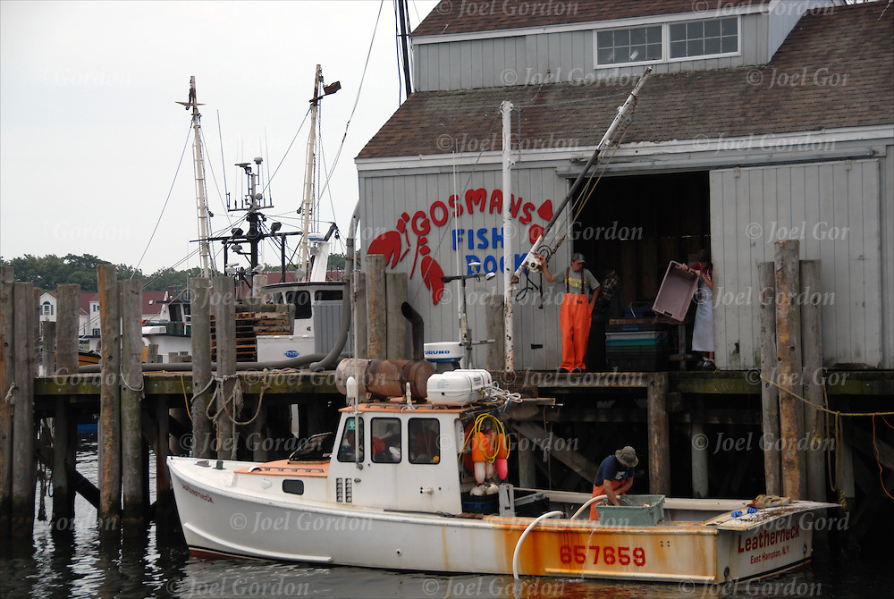 Fishing boat at gosmans dock in montauk harbor joel for Montauk ny fishing