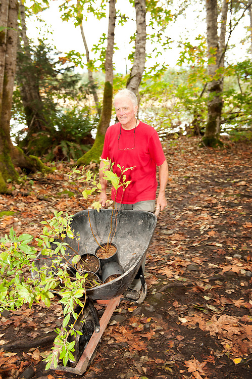James Gracie pushes a wheel barrow full of aspen and willow seedlings along the Swan Trail at the annual Squamish River Watershed Society Rivers Day event.
