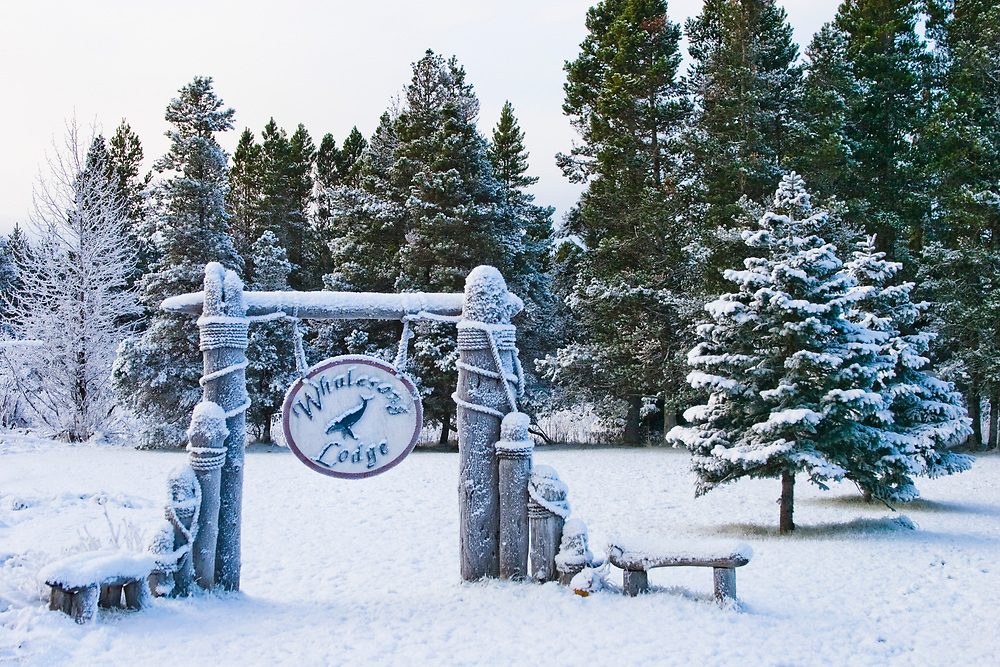 The Whalesong Lodge sing dangles from a nautical signpost and is covered in snow on a wintery day in Gustavus, Alaska.