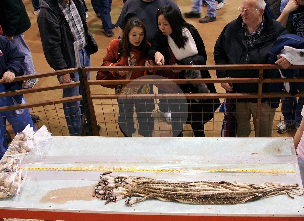 Spectators view dozens of western diamondback rattlesnake skins during the 51st Annual Sweetwater Texas Rattlesnake Round-Up March 14, 2009 in Sweetwater, Texas. During the three-day event approximately 240,000 pounds of rattlesnake will be collected, milked and served to support charity.
