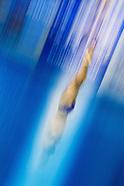 Diving portfolio