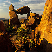 North America, United States, Southwest, West, Big Bend, Big Bend National Park. .Grapevine Hills in rugged Big Bend National Park in Southwest Texas.