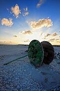 Evening on a beach composed entirely of seashells. Cayo Santa Maria, Villa Clara Province, Cuba.