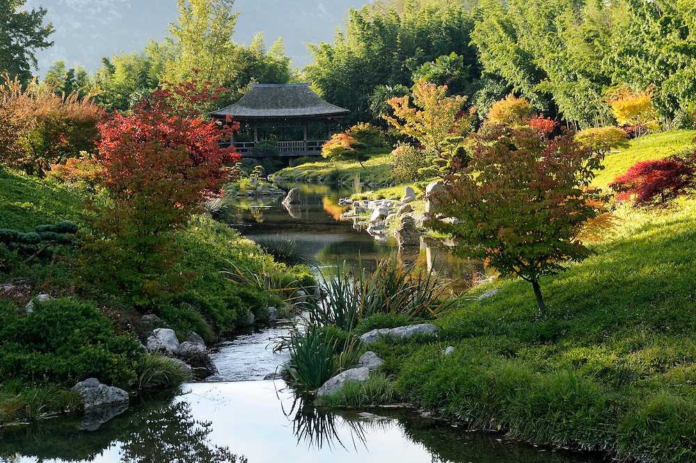 Languedoc photos jean du boisberranger for Paysagiste jardin japonais