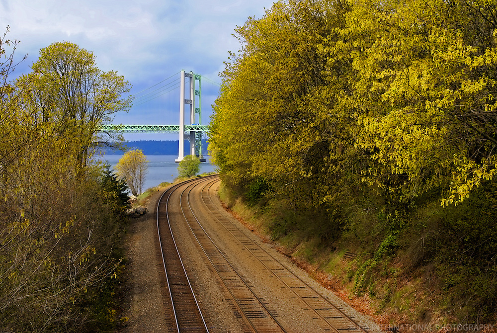 Tacoma Narrows Bridge, Titlow Beach Park, Tacoma, Washington