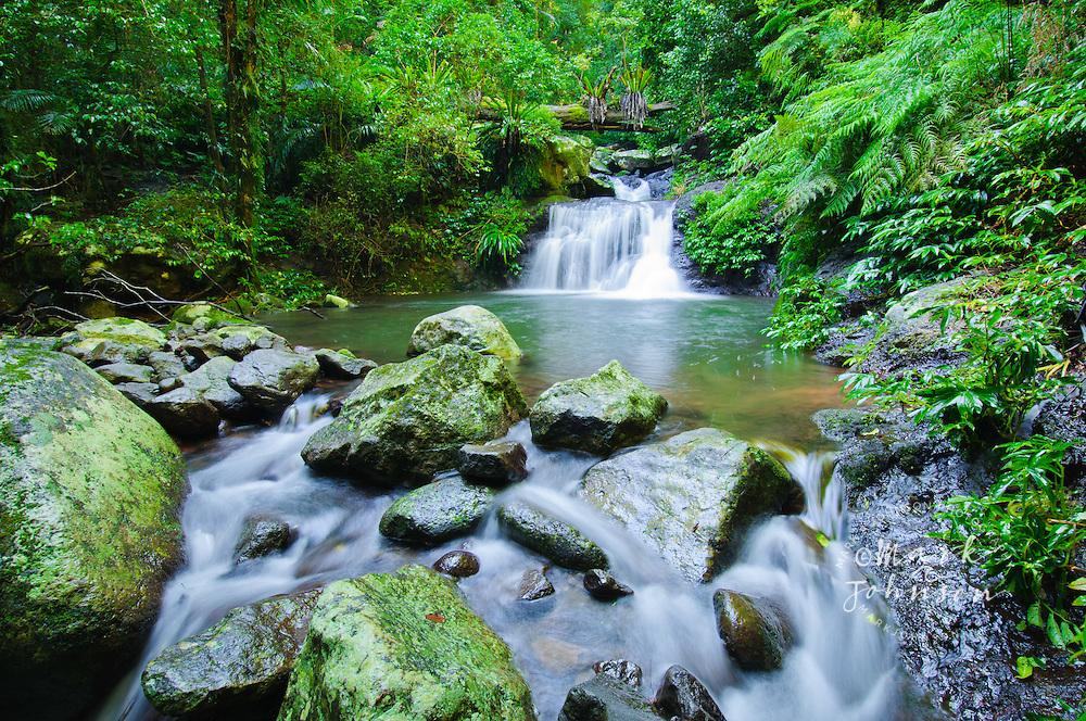 Waterfall, Lamington National Park, Gold Coast hinterland, Queensland, Australia