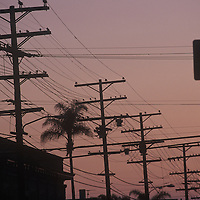 Dusk silhouette shot of rows of telephone poles and power lines along Robinson Avenue, Hillcrest area of San Diego.