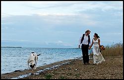 Brian Jenkins wedding portfolio