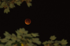 2015-09-28 Lunar eclipse coincides with super moon.