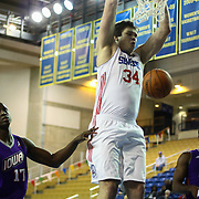 Delaware 87ers Center Kyrylo Fesenko (34) dunks the ball in the first half of a NBA D-league regular season basketball game between the Delaware 87ers (76ers) and the Iowa Energy Tuesday, Jan 14, 2014 at The Bob Carpenter Sports Convocation Center, Newark, DE