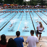 Swimmers competes in the 50 meter freestyle during the Summer Swim league championships finials Saturday, July. 17, 2015 at Western YMCA in Wilmington, DEL