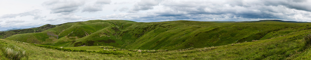Buchtrig, Cheviot Hills, Scottish Borders, UK. 11th July 2015. Looking east towards Broad Law and Dormount Hope near Buchtrig just inside the Scottish Border.