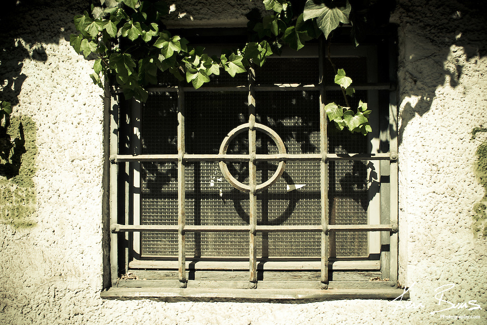 Bars and Ivy around a window in Munich, Germany