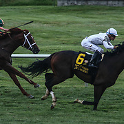 American Patriot & Jockey J. Ortiz wins the $200K purse during 62nd The Kent Stakes race Saturday, June. 16, 2016 at Delaware Park Race Track in Wilmington Delaware.