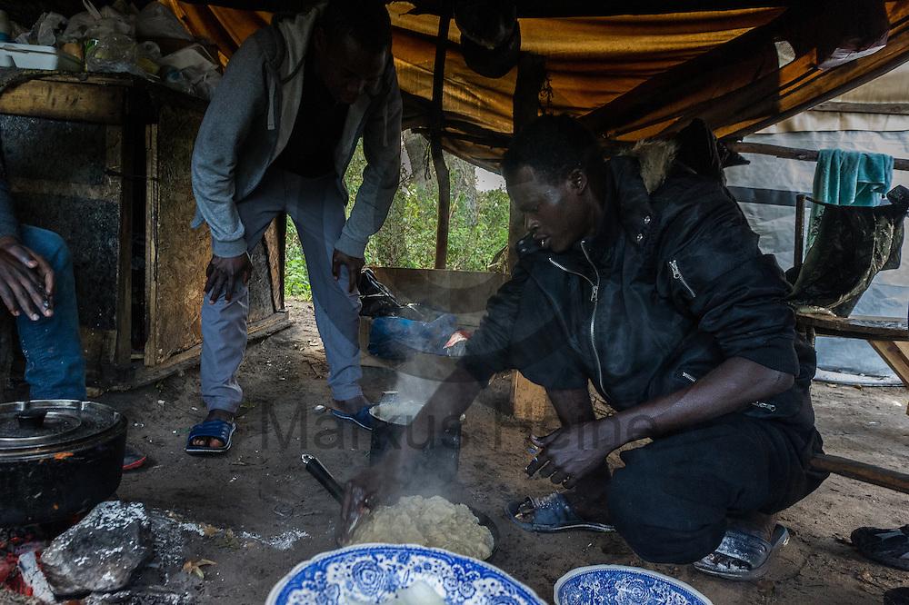 Calais, Frankreich - 17.10.2016<br /> Migranten aus dem Sudan kochen im Dschungel von Calais Asseeda (Porridge). Das Fluechtlingscamp an der Kueste zum Aermelkanal soll laut franz&ouml;sischer Regierung in den n&auml;chsten Tagen geraeumt werden. In dem Camp leben um die 1000 Fluechtlinge und warten auf die Moeglichkeit zur Weiterreise durch den Eurotunnel nach Gro&szlig;britannien. Photo: Foto: Markus Heine / heineimaging<br /> <br /> Calais, France - 2016/10/17<br /> Migrants from Sudan cook in the Calais Jungle Asseeda (Porridge). The refugee camp on the coast to the English Channel is to be cleared in the next few days, according to the French government. In the camp live around the 1000 refugees and wait for the possibility to travel further through the Eurotunnel to the UK. Photo: Foto: Markus Heine / heineimaging<br /> <br /> ------------------------------<br /> <br /> Ver&ouml;ffentlichung nur mit Fotografennennung, sowie gegen Honorar und Belegexemplar.<br /> <br /> Bankverbindung:<br /> IBAN: DE65660908000004437497<br /> BIC CODE: GENODE61BBB<br /> Badische Beamten Bank Karlsruhe<br /> <br /> USt-IdNr: DE291853306<br /> <br /> Please note:<br /> All rights reserved! Don't publish without copyright!<br /> <br /> Stand: 10.2016<br /> <br /> ------------------------------