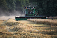 © Rob Arnold. 06/08/2014. Hampshire, UK. A combine harvester harvesting Spring Barley in a field on the Malshanger Estate. The estate grows mint, lavender and camomile as their 'aromatic' crop, along with the staple farm crops such as wheat, barley and oats. The oil is available direct from Summerdown Mint, but is also available from Neal's Yard in London. The tea is sold at leading retailers nationwide, including Booth's, Harvey Nichols, Partridge's & Waitrose. Photo by Rob Arnold