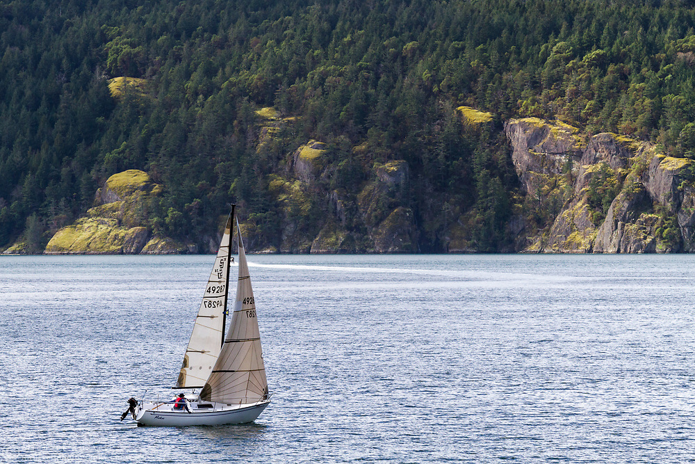 The sailboat Makai sails from Burgoyne Bay on Salt Spring Island, British Columbia, Canada.  Photographed from the Daffodil Trail in Burgoyne Bay Provincial Park.  The cliffs and forest in the background are on Vancouver Island near Duncan, BC and the waters inbetween are the Sansum Narrows.