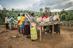 Farmers sort and wash the cherries and beans of coffee at a small farm in the village of Hafursa, Yirgacheffe, in Ethiopia. Ethiopia is the world's seventh largest producer of coffee, and Africa's top producer.