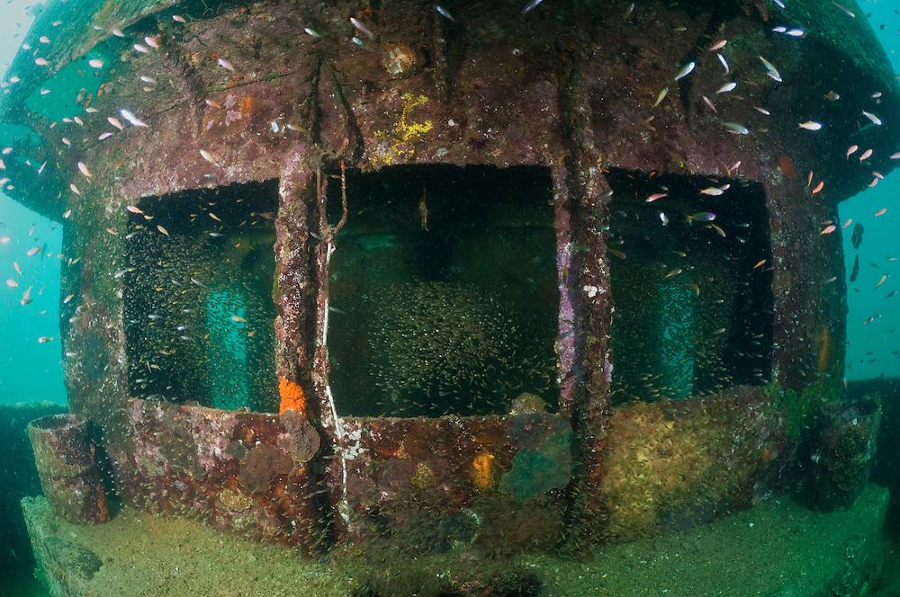 9 Situs Menyelam Favorit di Pulau Weh